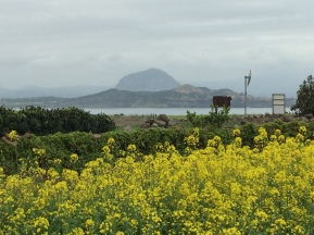 Jeju island seen from Gapado