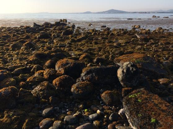 Vista de Jeju desde Gapado